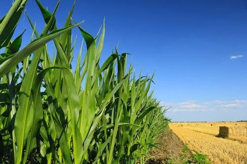 Landmaschinen für die Landwirtschaft