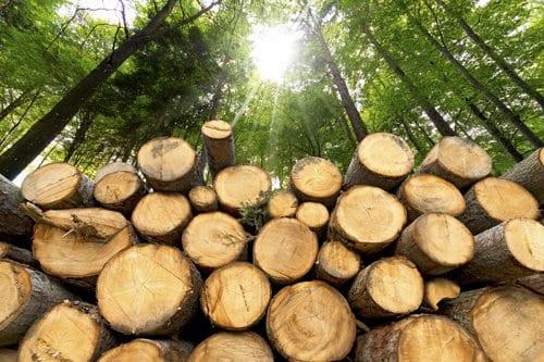 Landmaschinen für Forst & Jagd