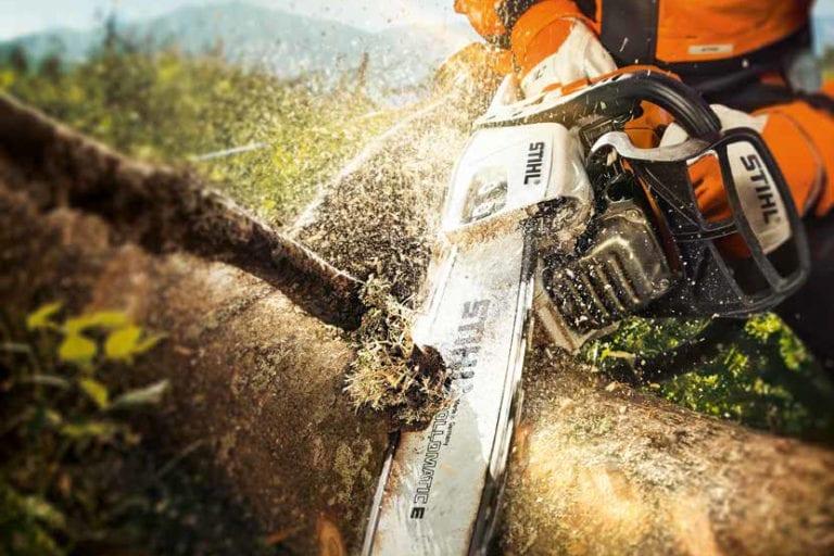 Holz und Forst Spezial von Josef Oechsle 2020