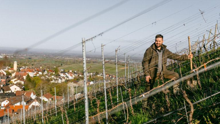 Im Interview: Johannes Kopp, Weingut Kopp in Sinzheim-Ebenung (Baden)
